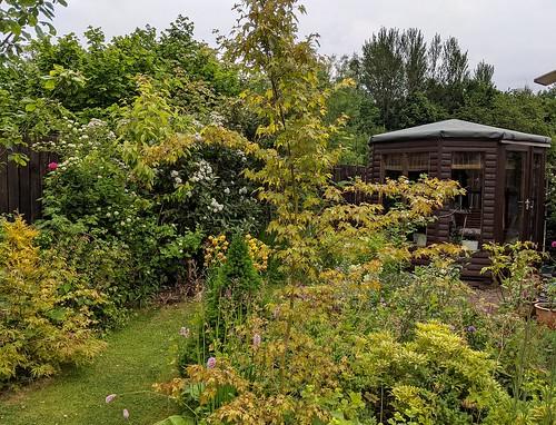 my Garden , Fife