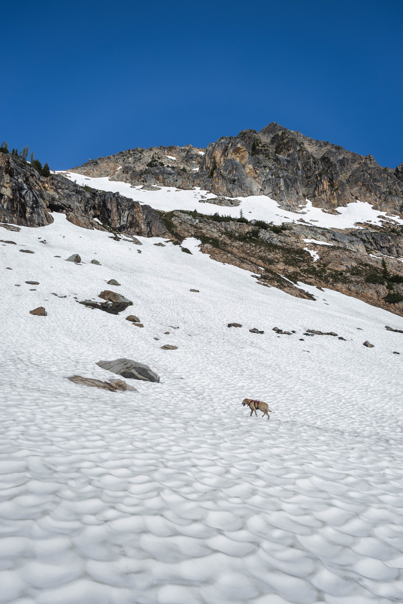 Aiming for the upper snowfield
