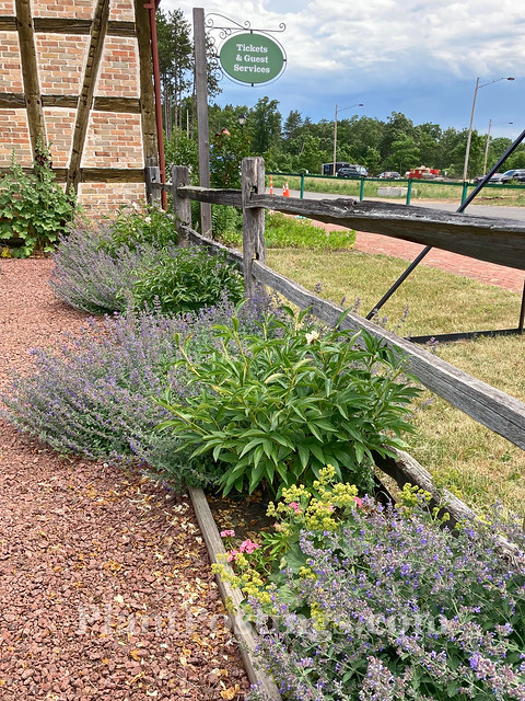 teaching garden 3