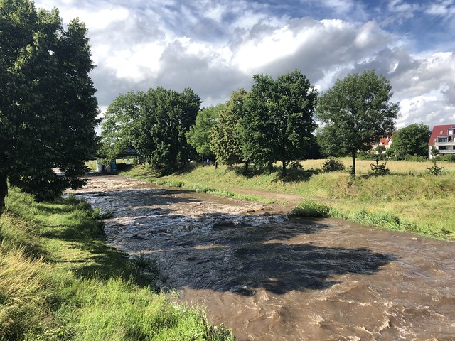 Fast flowing river Dreisam