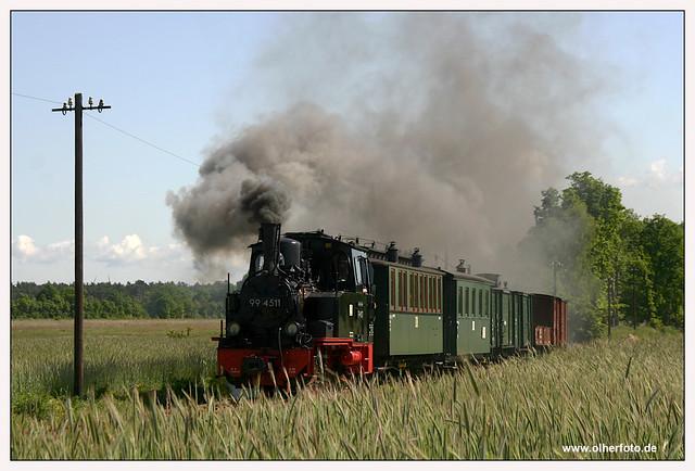 Pollo - 2007-06