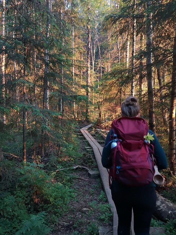 Pitkospuut Liesjärvi