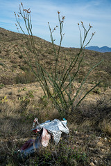2020 04 Balloon Trash above Shaw Canyon in the Rincon Mountain Wilderness