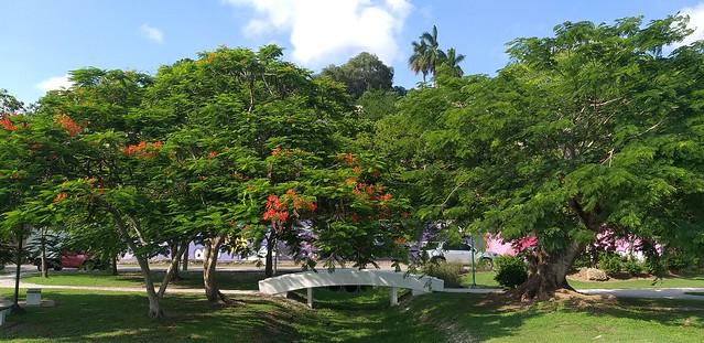Parque Fray Andrés de Olmos