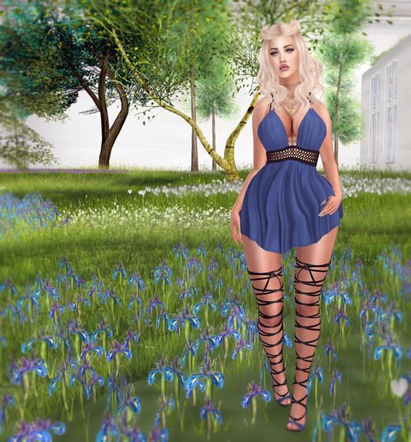 In my Garden…