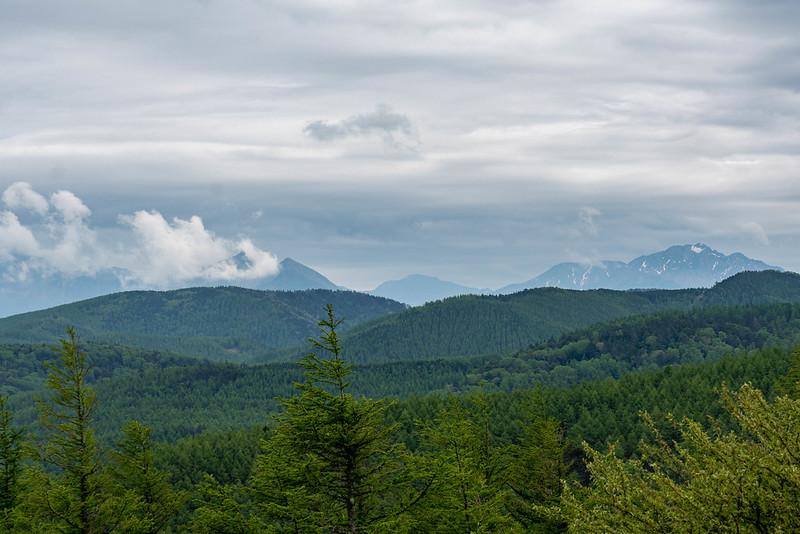 入笠山から南アルプス