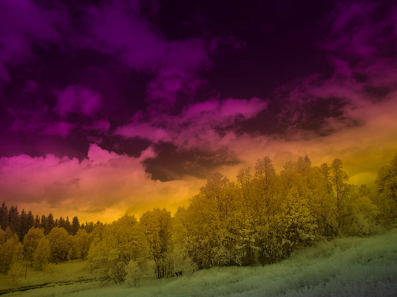 Infrared of the day 29