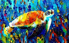 Loggerhead Sea Turtle - Creatures of the Deep Series