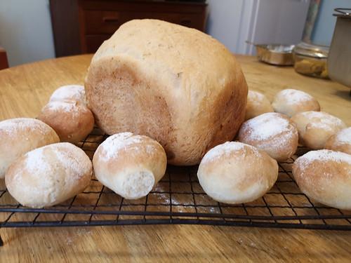 Loaf & rolls