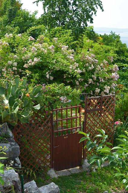 Secret Garden [Prosecco - 13 June 2021]