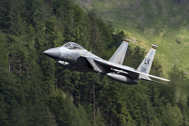 493rd Grim Reapers F-15C 84019