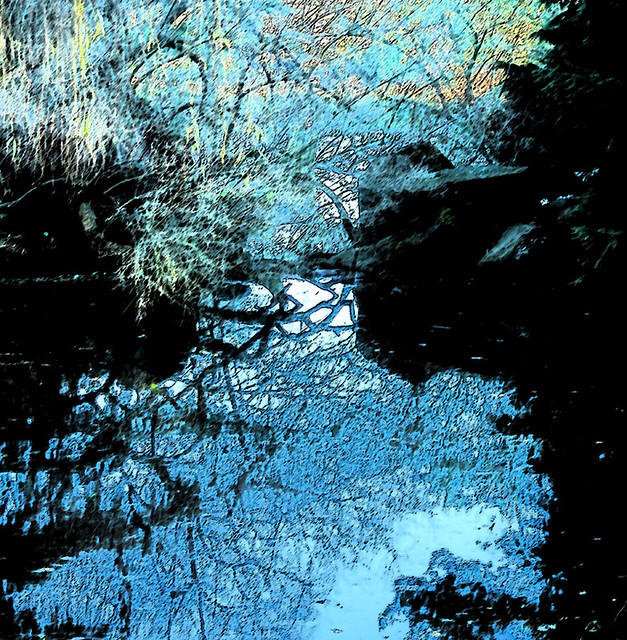 Using the Sumi-e brush stroke filter in Photoshop to turn this duck pond into a Japanese painting