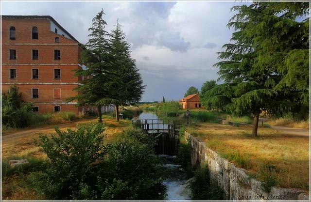 El Canal de Castilla a su paso por Dueñas (Palencia)