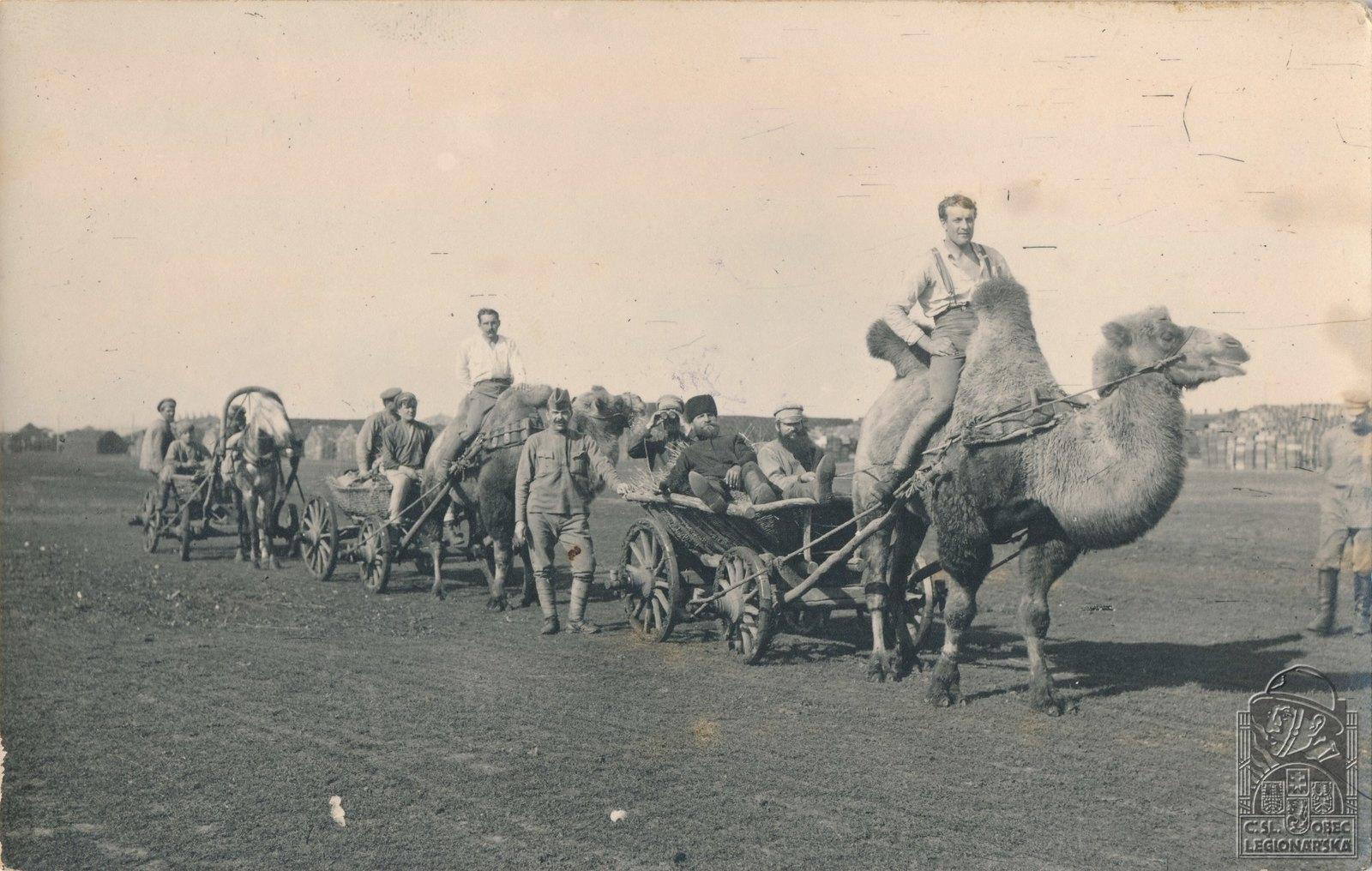 1918. Катание на верблюдах в Обшаровке. Самарская губерния
