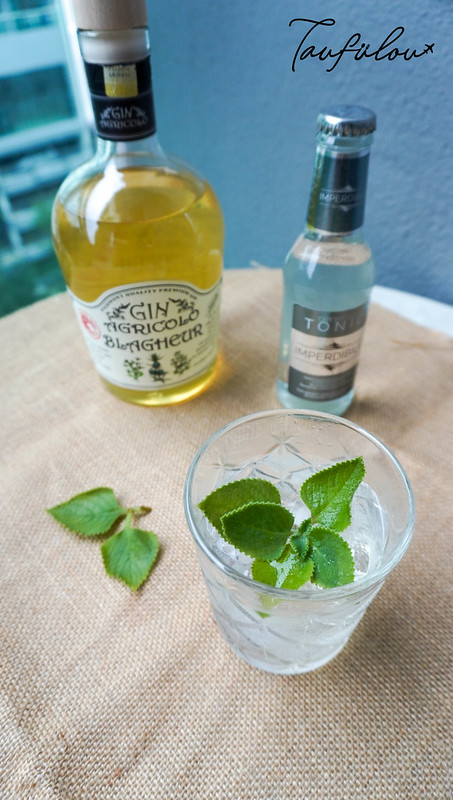 gin tonic and mint