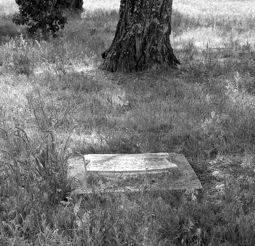 Riggs Cemetery, Ilford Ortho+