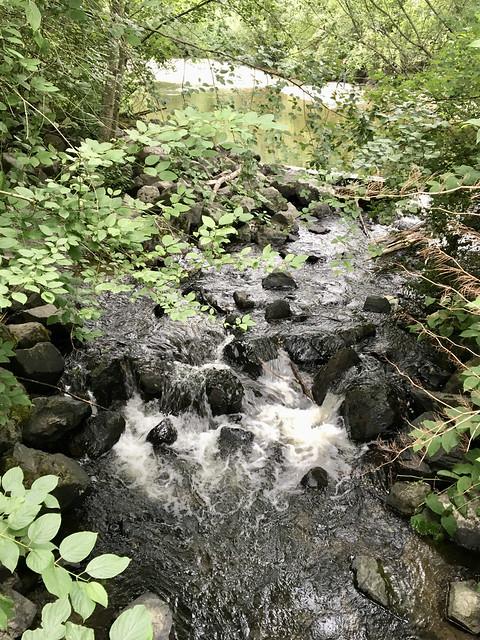 182/365: The Creek Still Runs
