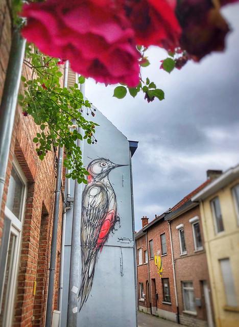 Woodpecker, a beautiful mural by artist Dzia