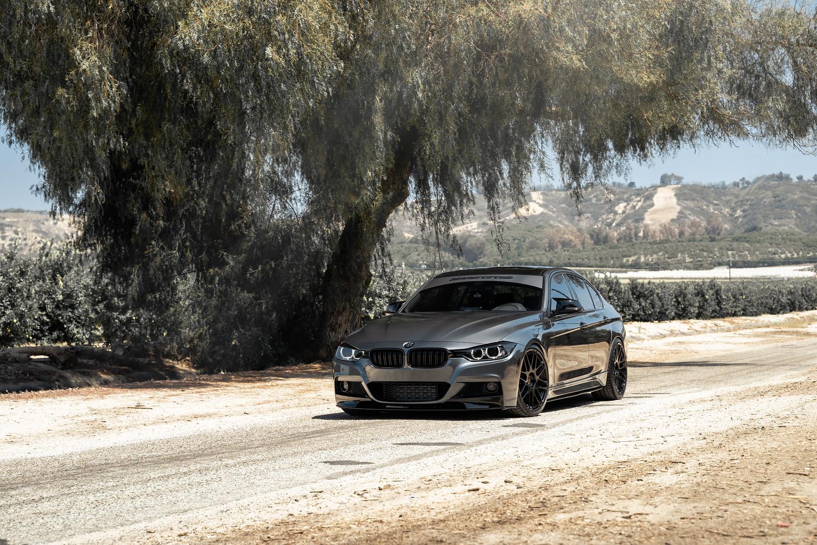 2015_BMW_335i_BDF12_Custom_Finish_Gloss_Black_3