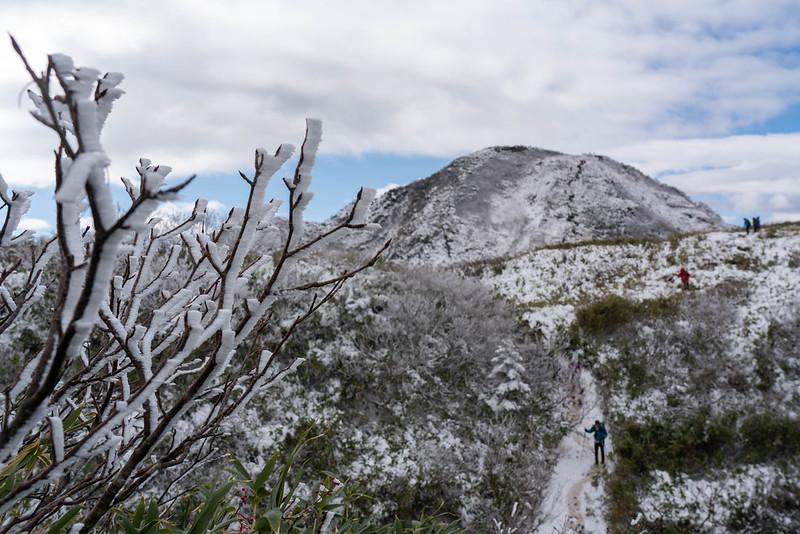 雨飾山の笹平