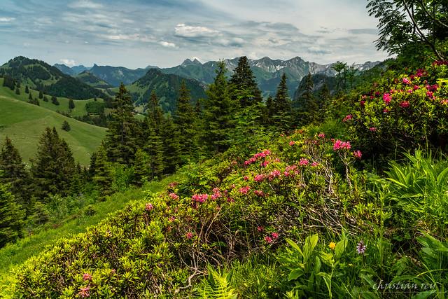 Les préalpes fribourgoises depuis Belle Chaux (Switzerland)