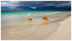 Outer Hebrides for the Holidays
