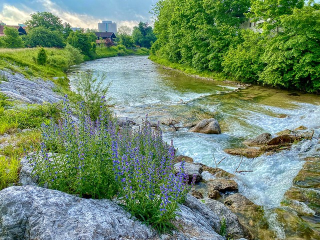 Kieferbach creek in Kiefersfelden in Bavaria, Germany