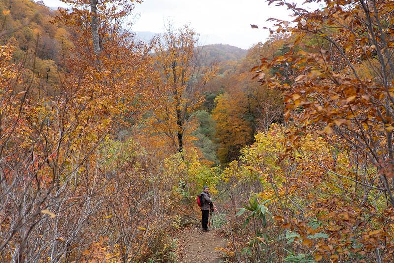 紅葉の雨飾山