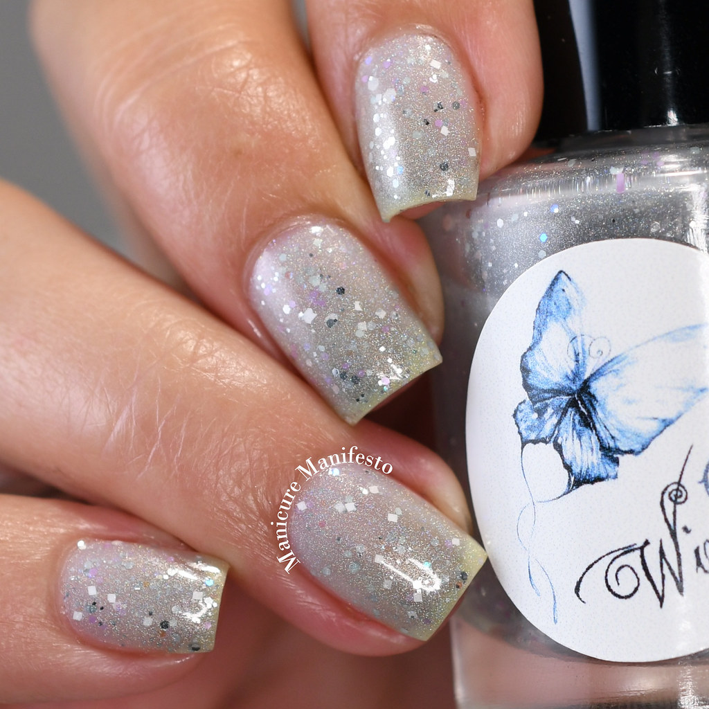 WingDust Collections Day Dreamer