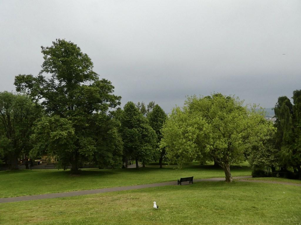 Brandon Hill Park, Bristol