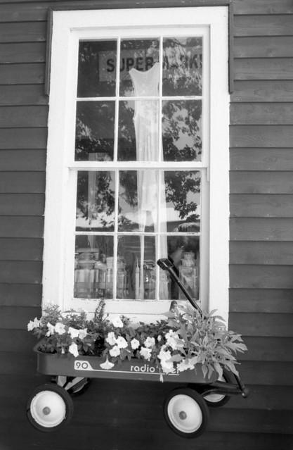 Long Johns in the Window