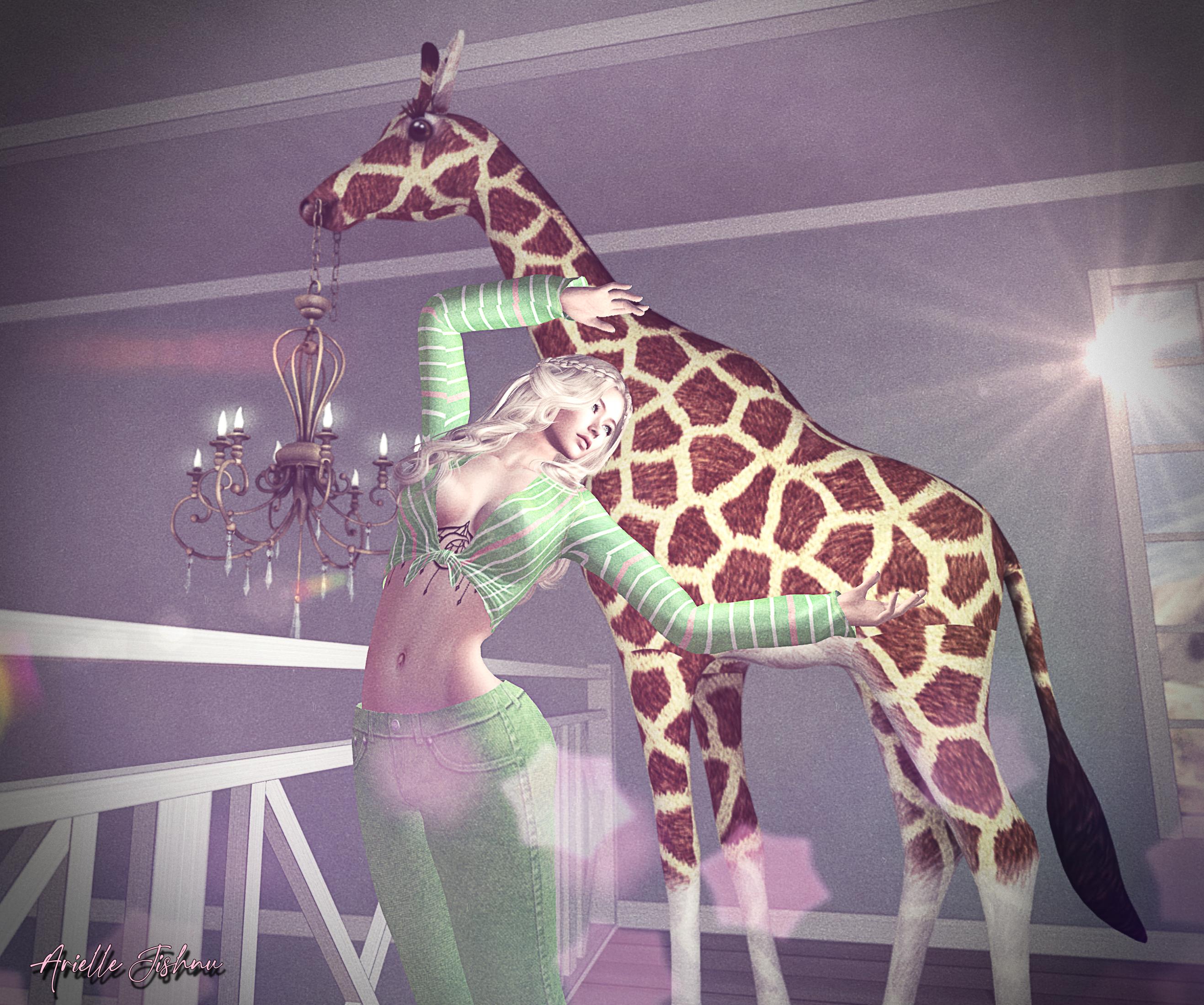 giraffe_002