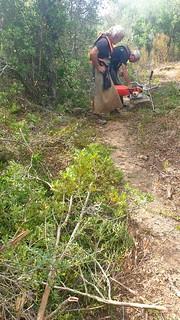 Sur le tronçon A Sarra - parc moto-cross : les deux débroussailleurs