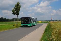 WF-S 2041   Reisebüro Schmidt GmbH   MAN A21 Lion's City NL323