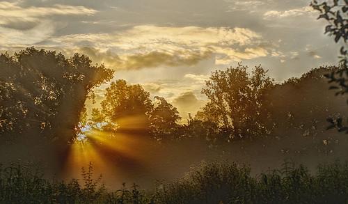 "sunrise light belgium sterrebeek smcpentaxl43mmf19 smcpentaxfa43mmf19limited pentaxart ""pentaxflickraward"""