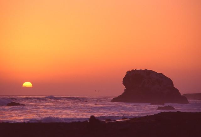 Simeon Sunset