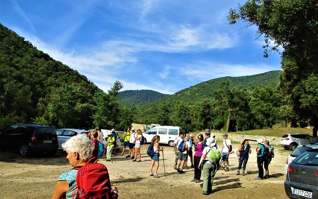 2021-07-04 El Bosc de Poblet, el bosc d'estiu