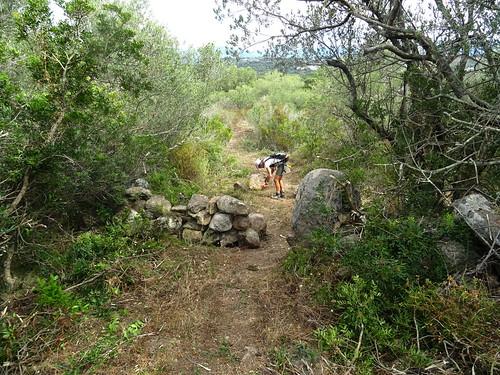 Sur le tronçon A Sarra - parc moto-cross : le sentier se rétrécit