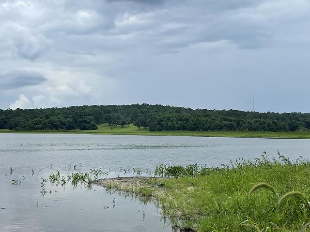 51291090105 302c6381bd z Lake Jackson @ Crowder Landing Park Leon Co FL (3)