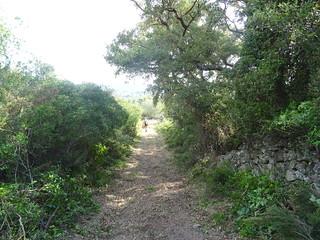 Sur le tronçon A Sarra - parc moto-cross : le sentier après les travaux