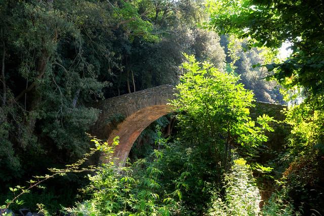 Genoese bridge