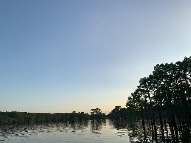 Caddo Lake | June 2021