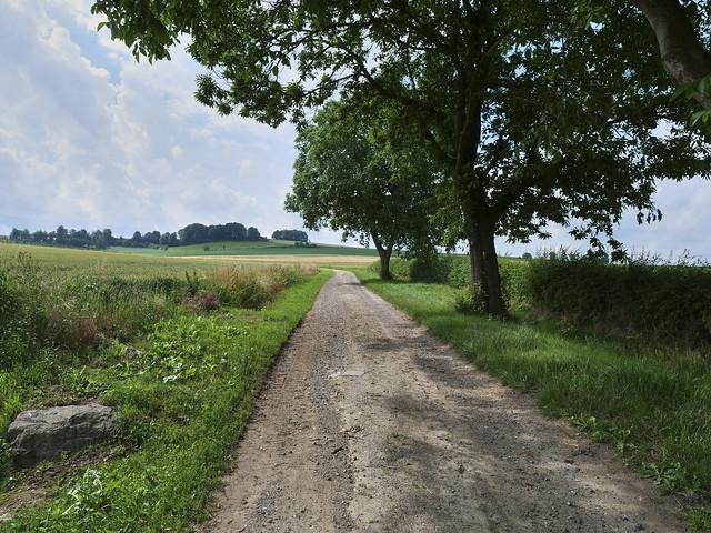 Landscape Ransdaal Limburg