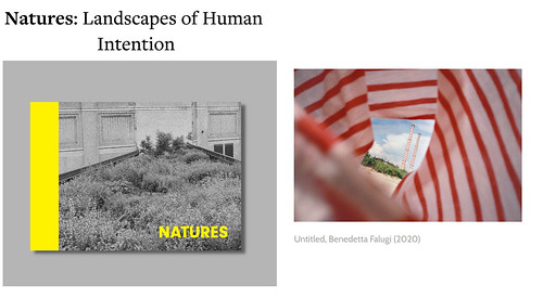 Immaterial Book - Natures