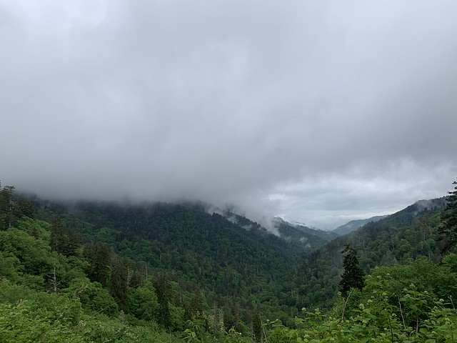 Great Smoky Mountains | June 2021