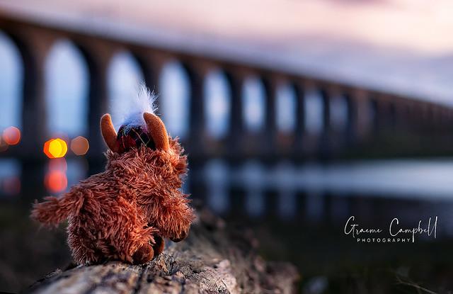 Morag at the Border Bridge
