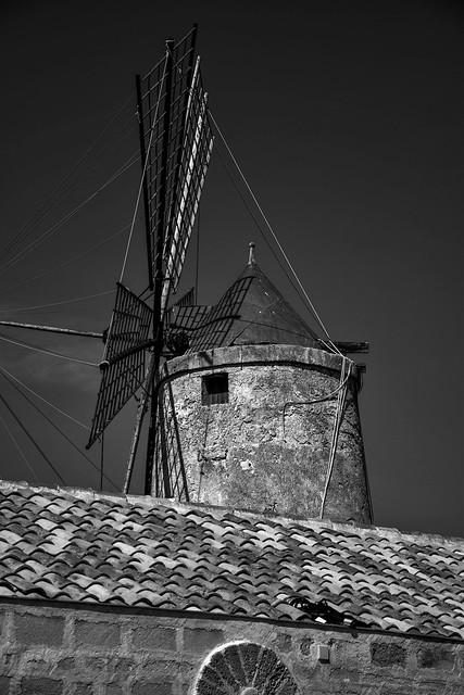The Salt Road, windmill
