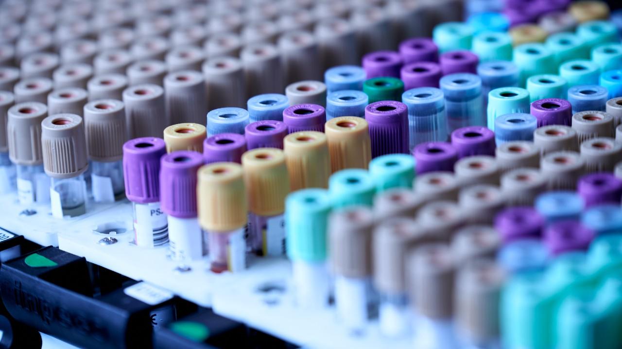 Testing in a scientific laboratory