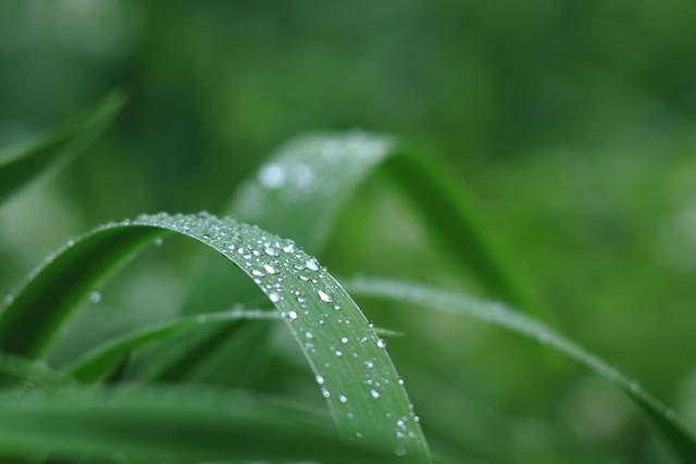 Arcs and raindrops