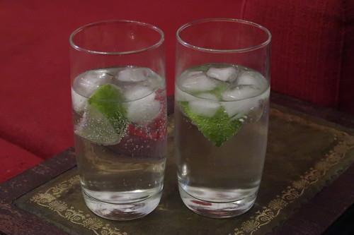 Gin & Tonic (2 Gläser)